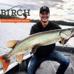 Fall time Musky Fishing in Kenora Ontario
